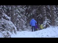 Skis OAC Kar 147 + fixations EA
